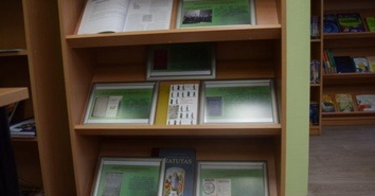 Konstitucijos diena bibliotekoje